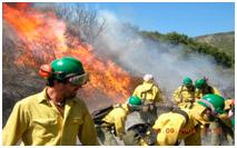 Prevención de incendios forestales