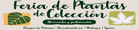 Feria Plantas de Colección 2019
