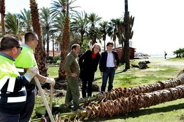 El Ayuntamiento desarrolla trabajos de mejora y embellecimiento en las playas de cara a la Semana Santa