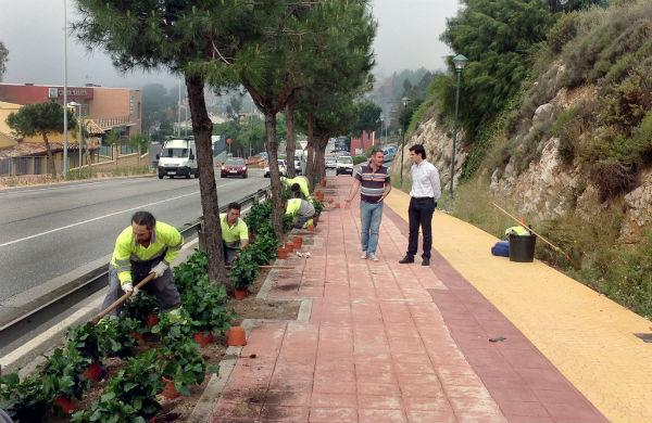 El Ayuntamiento embellece con más de 1.400 plantas la principal entrada de Arroyo de la Miel de cara a la temporada estival