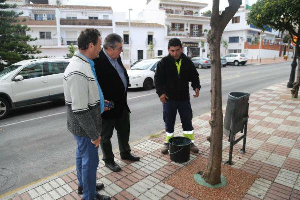El Ayuntamiento acomete el acondicionamiento y mejora de más de 350 alcornoques