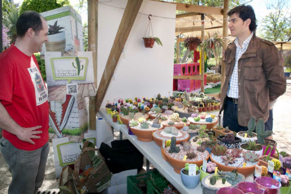 Gran éxito de acogida en la VIII Feria de Cáctus y otras Plantas de Colección