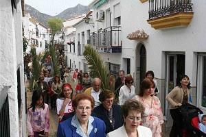 Recordando Domingo de Ramos Palmas y Olivos 06