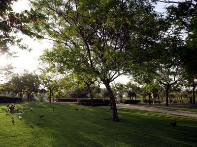Dos nuevas zonas verdes para el municipio