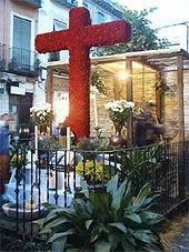 Cruces de Mayo 2006
