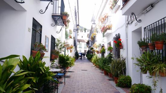 VI Concurso de terrazas decoradas