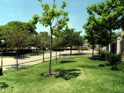 Tardes de Biblioteca en el Parque de la Paloma.