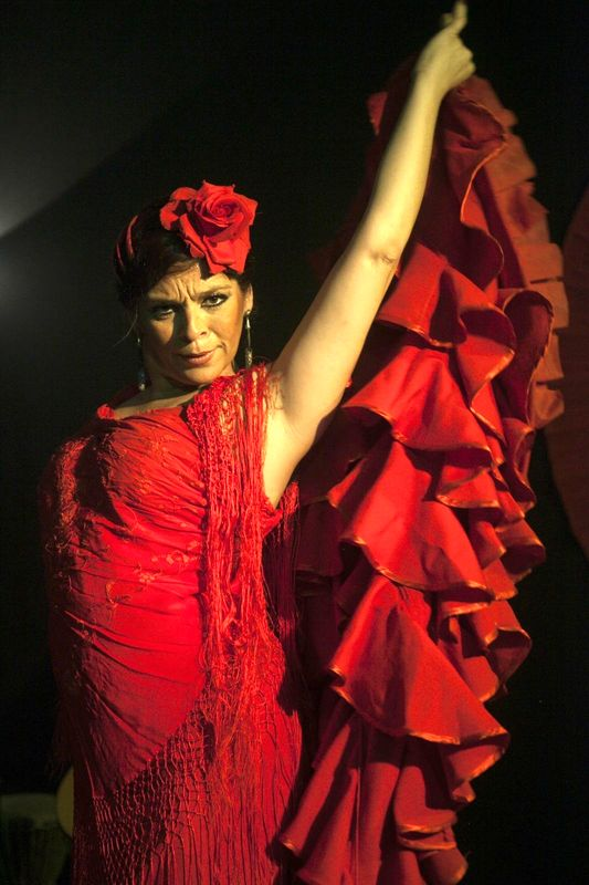 NOCHES DE FLAMENCO EN EL MUSEO: Luna Flamenca.