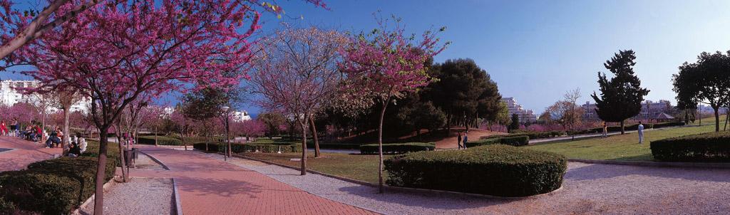 Parque de la Paloma - Benalmádena Costa