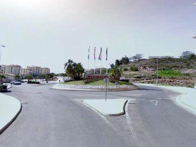 Culmina la Campaña de Plantacion de 4.000 Arboles en el Municipio.