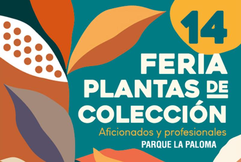 14 FERIA DE PLANTAS DE COLECCIÓN